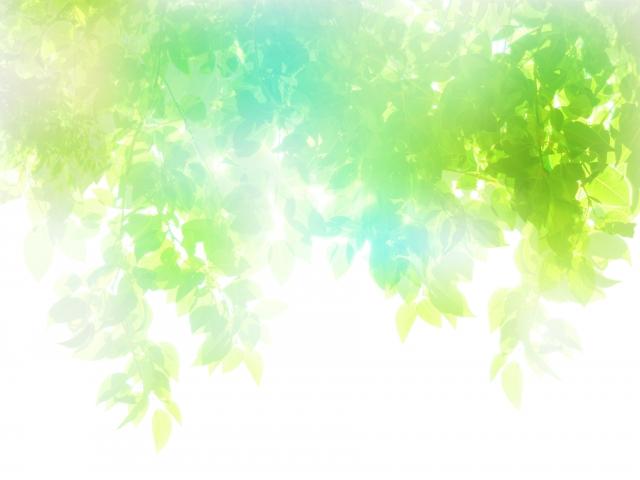 瞼を閉じていても光は感じる